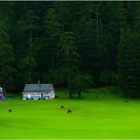 Grand Himachal With Amritsar Tour