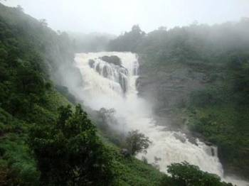 Coffee Experience Coorg Tour Package