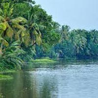 Tour Packages For Kerala (03 Days/ 02 Night)