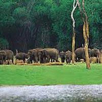 Tamil Nadu with Kerala Tour 13Nights/14Days