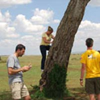5 Nights 6 Days Maasai Mara/ Lake Nakuru and Amboseli Safari. Tour