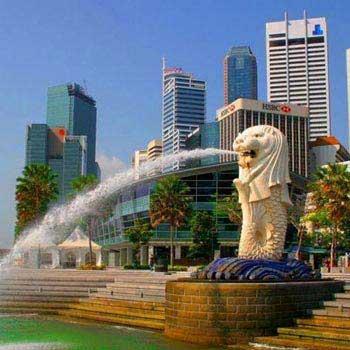 Singapore Ltc Package