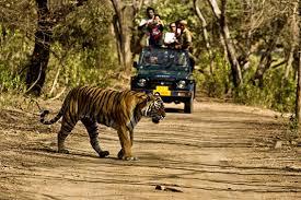 Delhi –mussoori (2n)-corbett(2n)-nainital(2n)- Delhi Tour