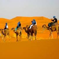 Rajasthan Desert Tours - 7N - 8D