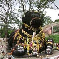 Bangalore-Mysore-Ooty-Kodaikanal-7N8D Tour