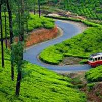 Kanyakumari-Kovalam-Kumarakom-Thekkady-Munnar Package - 7N/8D
