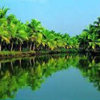 Temples with Beach Tour of Tamilnadu & Kerala