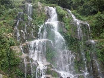 Siliguri- Gangtok- Pelling Tour