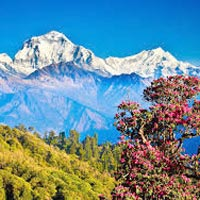 Nepal 6 Nights / 7 Days Tour