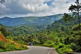 Coorg Hill Station Trip Package