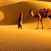 Rajasthan Kings Tour ( 9 Days - 8 Nights ) Back to Tours