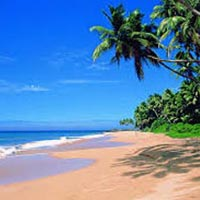 Unforgettable Goa Tour
