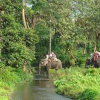 Dooars / Lataguri / Gorumara Package Tour 02 Nights 03 Days