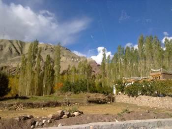Ladakh Shangri- La Tour