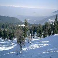 Srinagar- Kargil -Leh -Nubra-Pangong-Leh Tour Packag...