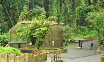 Darjeeling, Kalimpong and Gangtok Tour