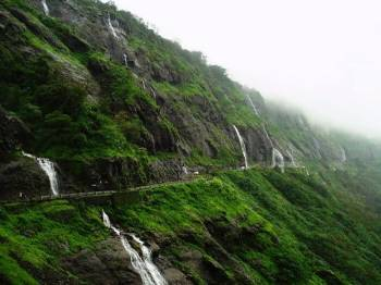 Experience Wayanad with Cgh4 Days & 3 Nights Tour