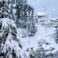 Himachal Tour From Delhi - Delhi - Shimla - Manali
