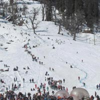 Alluring Shimla Manali (Honeymoon Special) Tour