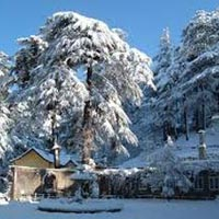 Tour to Shimla Manali with Chandigarh