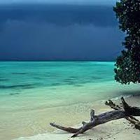 Andaman Tour Package With Havelock Island