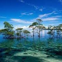 Joyful Andaman Tour