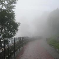 Kodaikanal Special offer Tour