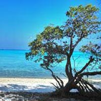 2Nights/03Days (Kavaratti Island Package)