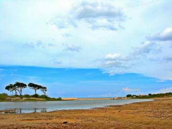 Discover Charming Sri Lanka Tour
