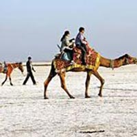 Gujarat Desert Beach Tour