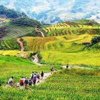 Different Sapa - Different Trek Package