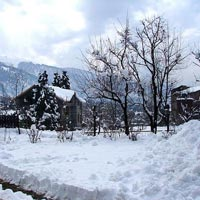 Manali - Shimla Volvo Tour Packages