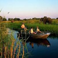 Safari: Botswana - Green Route  Formulastandard - Camping Tour