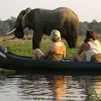 Canoe Safaris Tour