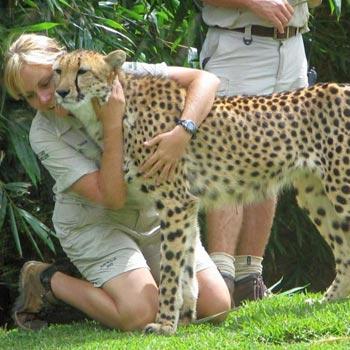 Cheetah Walk Tour