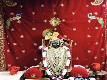 Shrinathji Darshan Tour Package