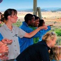 6 Days Kenya Safari Mara   Nakuru and Amboseli Tour