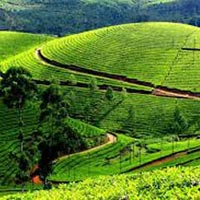 2nights 3 days Ooty Tour