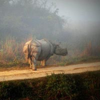 Shillong – Kaziranga Tour (6 Nights/ 7 Days)