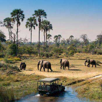 Cost of Botswana Budget Mobile Safari Tour