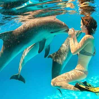 Amazing Mauritius Tour