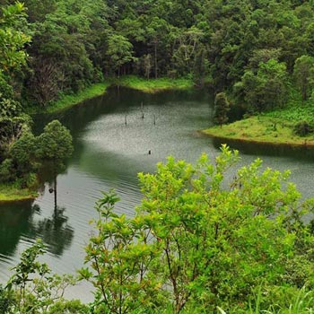 Ooty & Coorg Hills with Wayanad Package