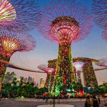 Singapore with Dream Cruise 06 Nights / 07 Days Tour