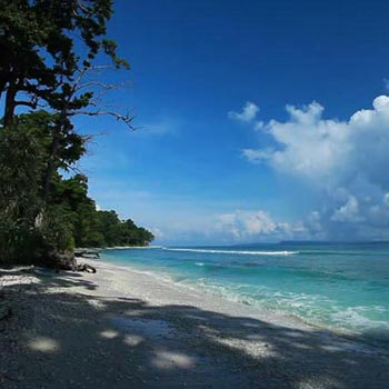 Package: 1 Andaman Package