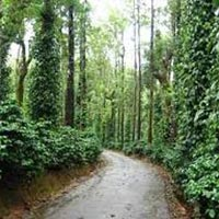 Hills with Wayanad Tour