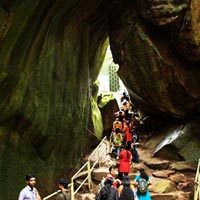 Wayanad Tour with Vythiri Tree house