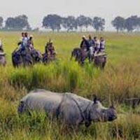 Short Escape to Kaziranga Tour