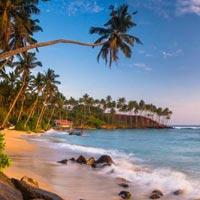 Prestine Sri Lanka Tour