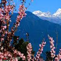 Romantic Sikkim Honeymoon Tour Package: Gangtok & Lachung