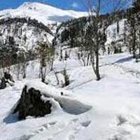 Shimla - Kufri - Delhi Tour